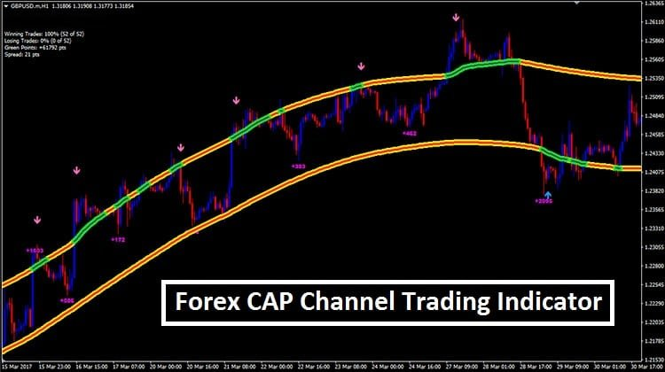The Best Forex Trading Strategy Ever